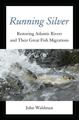 Image for Running Silver: Restoring Atlantic Rivers And Their Great Fish Migrations
