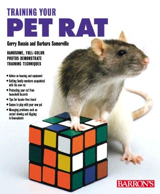 Image for Training Your Pet Rat (Training Your Pet Series)