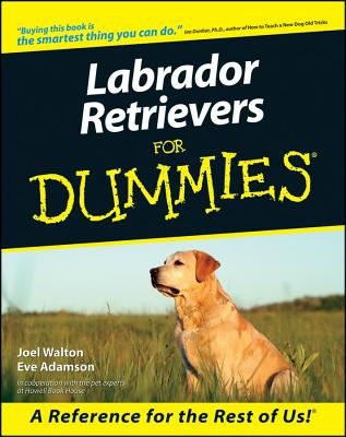 Image for Labrador Retrievers For Dummies