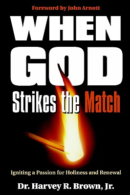 Image for When God Strikes the Match: Igniting a Passion for Holiness and Renewal