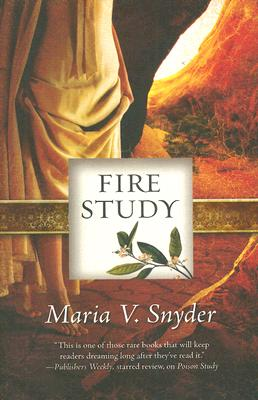 Image for Fire Study (Study, Book 3)