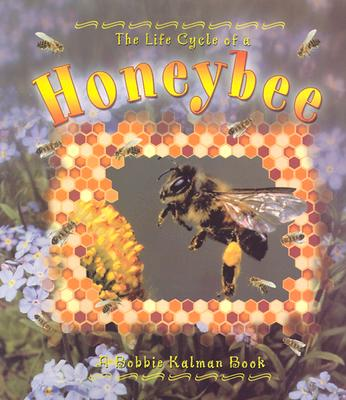 Honeybee (Life Cycle of A...(Paperback)), Kalman, Bobbie