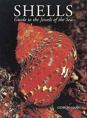 Image for Shells: Guide to the Jewels of the Sea