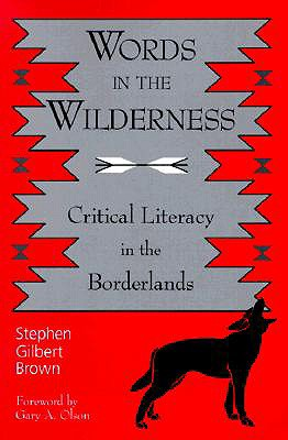 Image for Words in the Wilderness: Critical Literacy in the Borderlands (SUNY series, INTERRUPTIONS:  Border Testimony(ies) and Critical Discourse/s)