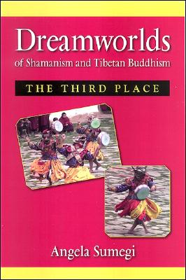 Image for Dreamworlds of Shamanism and Tibetan Buddhism: The Third Place