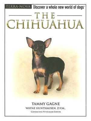 The Chihuahua, Gagne, Tammy
