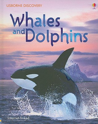 Image for Whales and Dolphins (Usborne Discovery)
