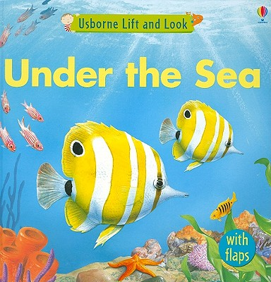Image for Under the Sea (Usborne Lift and Look Board Books)