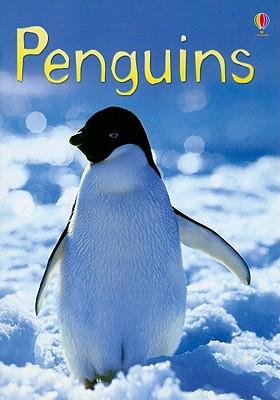 Image for Penguins (Usborne Beginners)