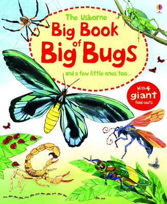 Image for The Usborne Big Book of Big Bugs: And a Few Little Ones Too...