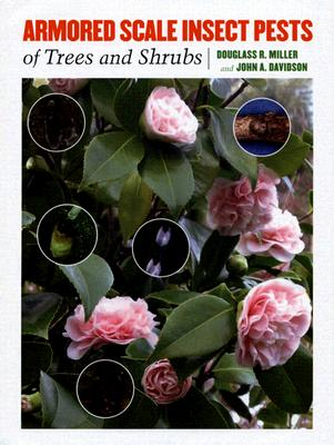 Image for Armored Scale Insect Pests of Trees and Shrubs (Hemiptera: Diaspididae) (Comstock Book)