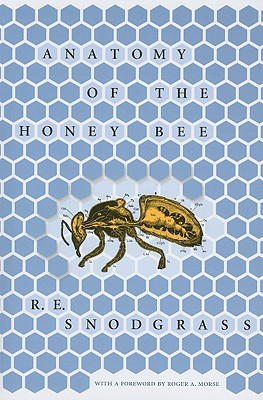 Image for Anatomy of the Honey Bee (Comstock Book)