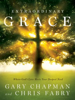 Image for Extraordinary Grace: How the Unlikely Lineage of Jesus Reveals God's Amazing Lov