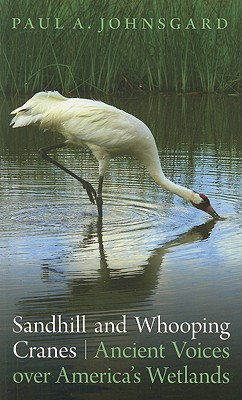 Image for Sandhill and Whooping Cranes: Ancient Voices over America's Wetlands