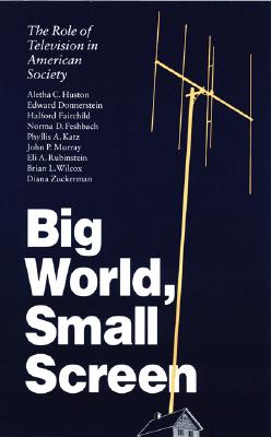Image for Big World, Small Screen: The Role of Television in American Society (Child, Youth, and Family Services)