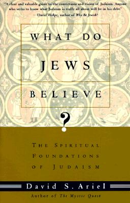 Image for What Do Jews Believe?: The Spiritual Foundations of Judaism