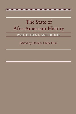 Image for The State of Afro-American History: Past, Present, Future