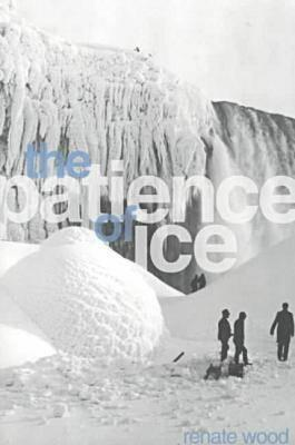 Image for The Patience of Ice
