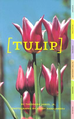 Image for Tulip (Affordable Series of Books for Gardeners)