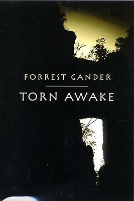 Torn Awake, Gander, Forrest