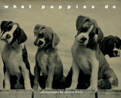 Image for What Puppies Do