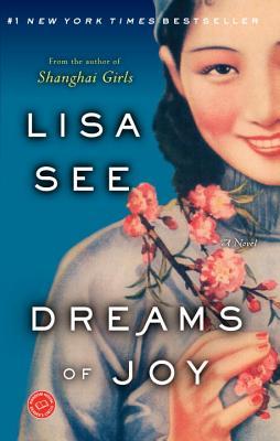 Image for Dreams of Joy: A Novel