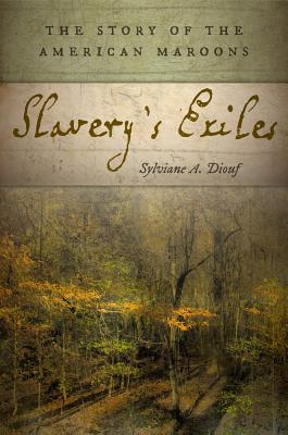 Image for Slavery's Exiles: The Story of the American Maroons
