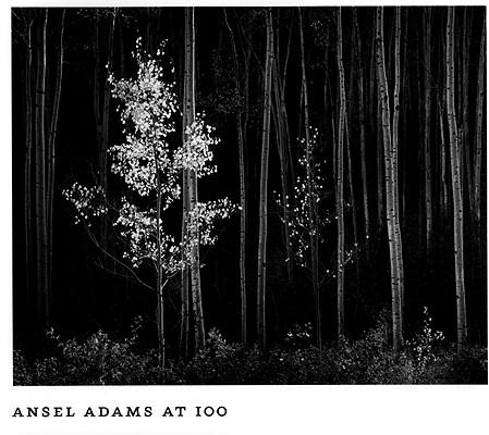 Ansel Adams at 100, Ansel Adams; John Szarkowski