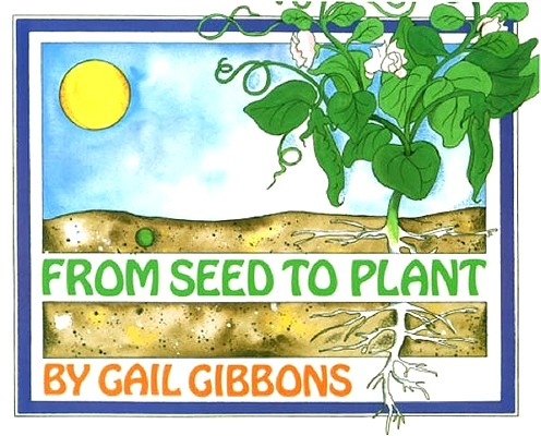 Image for From Seed to Plant