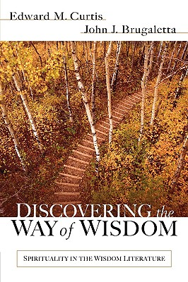 Image for Discovering the Way of Wisdom