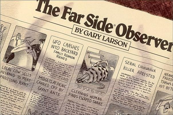 Image for 8 The Far Side Observer