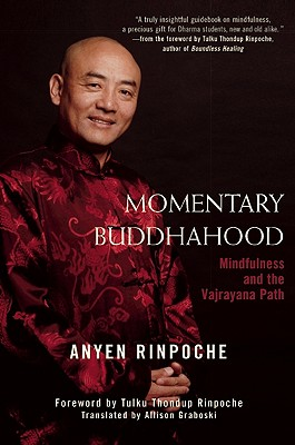Image for Momentary Buddhahood: Mindfulness and the Vajrayana Path