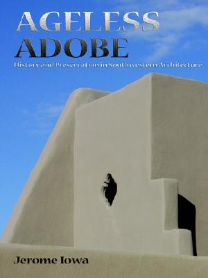 Image for Ageless Adobe, History and Preservation in Southwestern Architecture