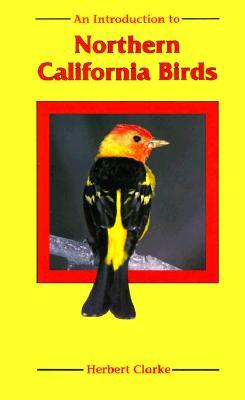 An Introduction to Northern California Birds, Clarke, Herbert