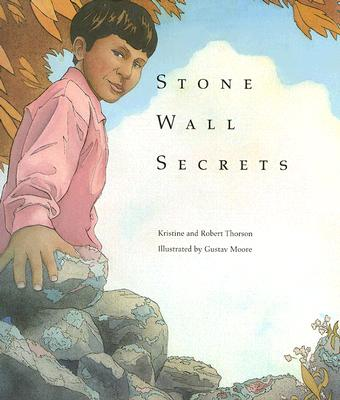 Image for Stone Wall Secrets
