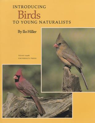 Introducing Birds to Young Naturalists: From Texas Parks & Wildlife Magazine, Hiller, Ilo