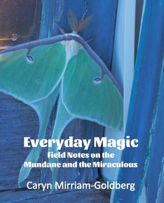 Everyday Magic: Field Notes on the Mundane and the Miraculous, Caryn Mirriam-Goldberg