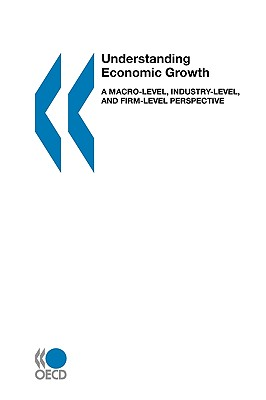 Image for Understanding Economic Growth: A Macro-level, Industry-level, and Firm-level Perspective