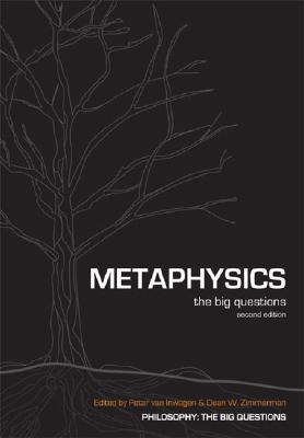 Image for Metaphysics: The Big Questions