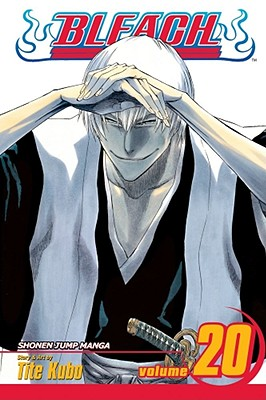 Image for Bleach, Vol. 20