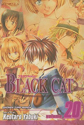 Image for Black Cat, Vol. 20