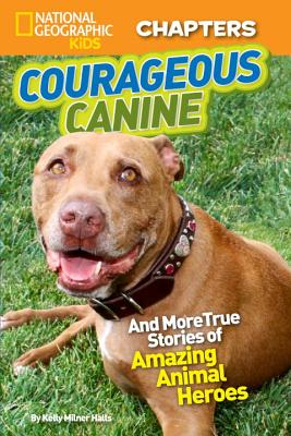 Image for Courageous Canine!