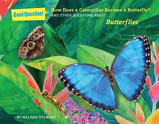 Image for How Does a Caterpillar Become a Butterfly?: And Other Questions about Butterflies (Good Question!)