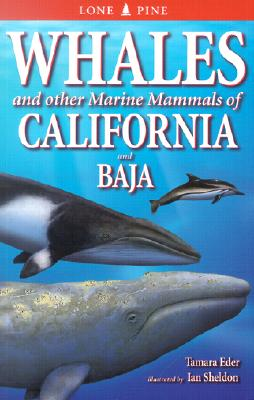 Whales and Other Marine Mammals of California and Baja, Eder, Tamara