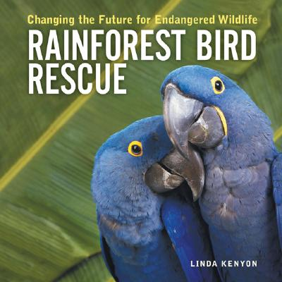 Image for Rainforest Bird Rescue: Changing the Future for Endangered Wildlife (Firefly Animal Rescue)