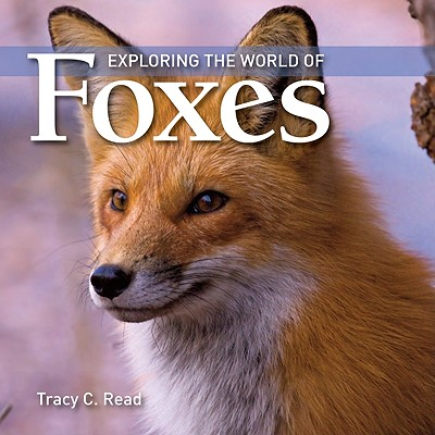 Image for Exploring the World of Foxes