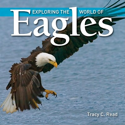 Image for Exploring the World Of Eagles