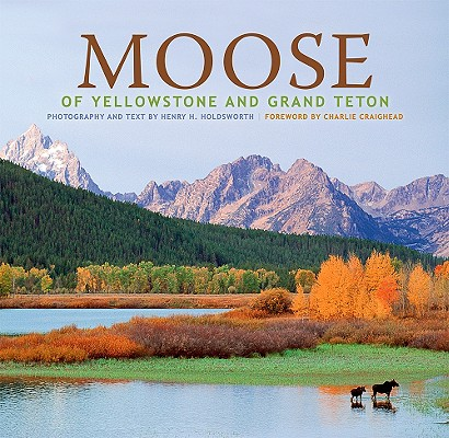 Image for Moose of Yellowstone and Grand Teton