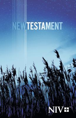 Image for Outreach New Testament - 2011 Edition new international version