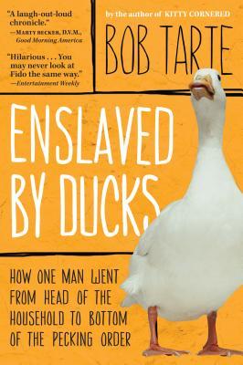 Enslaved by Ducks, Tarte, Bob